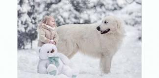 """İçinizi ısıtacak bir proje: """"Küçük Çocuklar ve Büyük Köpekler"""""""
