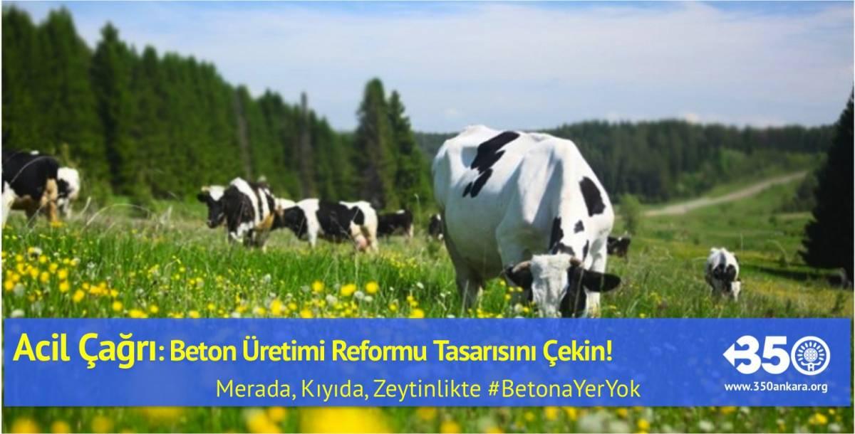 Acil çağrı: Beton üretimi reformu tasarısını çekin!