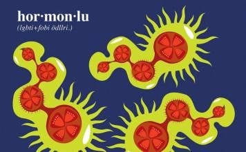 13. Hormonlu domates ödülleri sahiplerini buldu