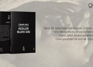Çınar Ekiz'in kaleminden Kediler Blues Gibi, Gaia Yayınları aracılığıyla sizlerle!
