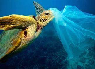 Kenya'da plastik poşet yasaklandı
