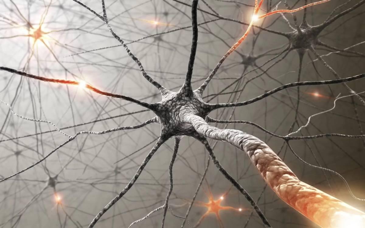 İnsan vücudundaki biyolojik saat keşfedildi